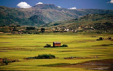 Paysage12-Madagascar