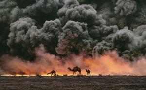 2014 Koweit