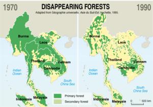 57.2. Etat des lieux forêt
