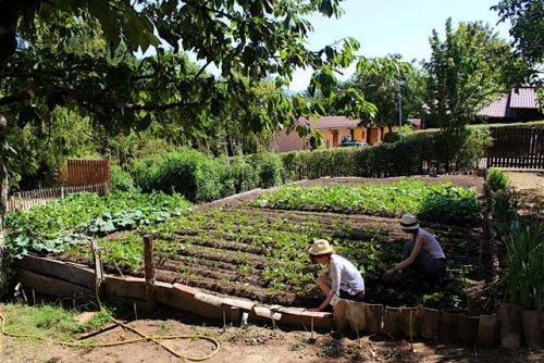2016 Taizé jardin.jpg