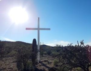 2016 Arizona