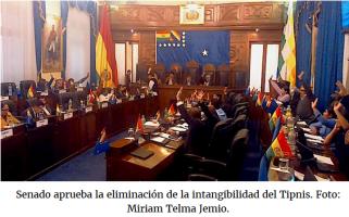 2017 ECOLOGIE - Bolivie TIPNIS
