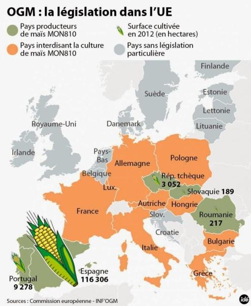 OGM en Europe
