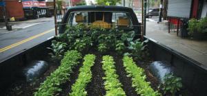 truck_farm_2_630.jpeg