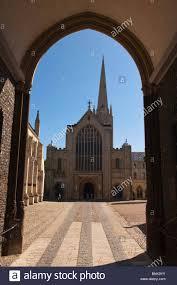 2018ECOLOGIE Cathédrale de Norwich