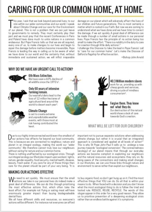 2019 ECOLOGIE Eglises Common-Home-leaflet-page-1-736x1024