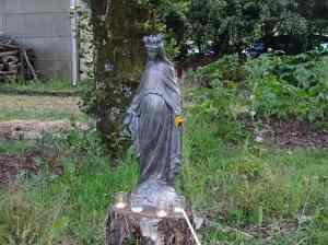 2- vierge dans le jardin