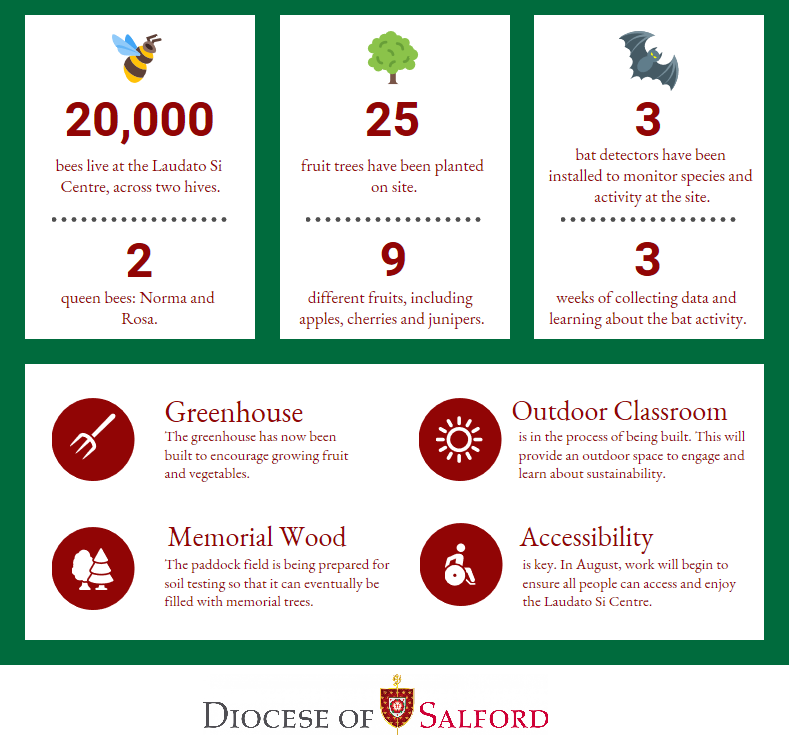 FINAL-Laudato-Si-in-numbers-green.png